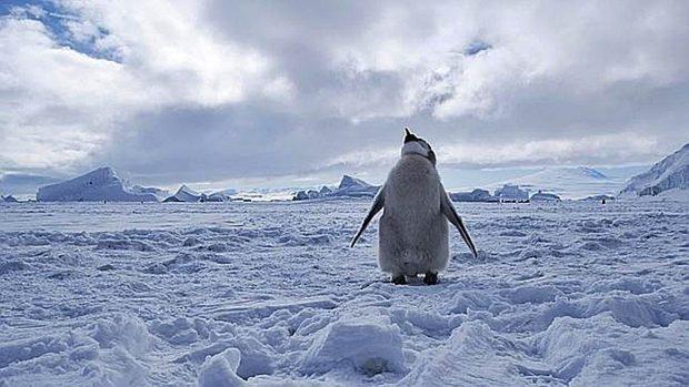 China pide ayuda para desarrollar vías de transporte en Ártico