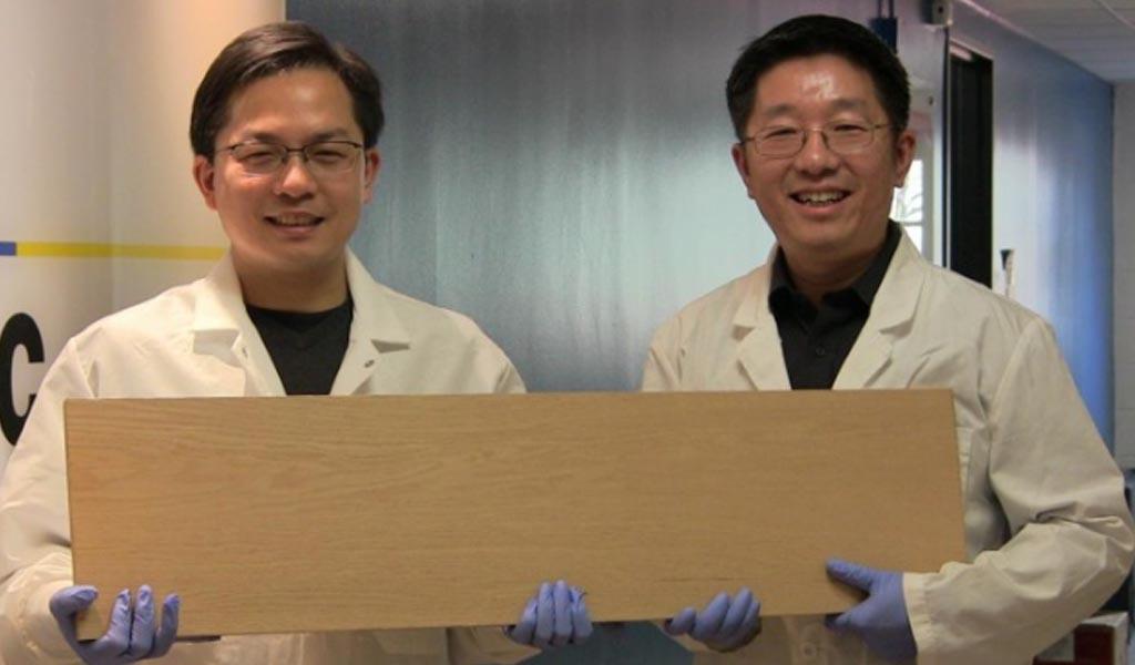 Investigadores crean 'súper madera' que podría rivalizar con el acero