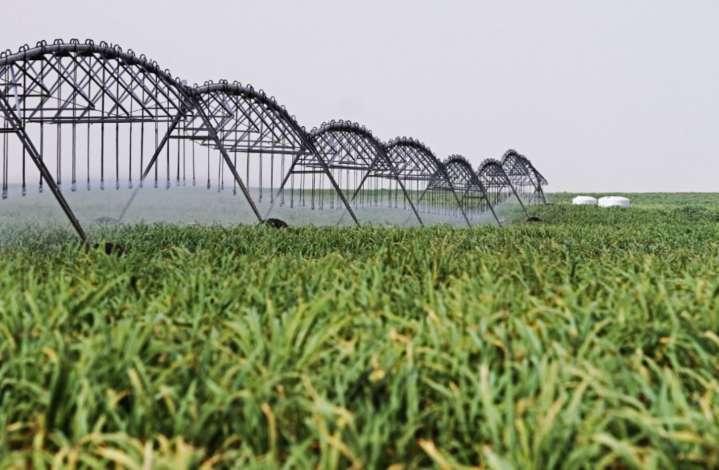 Obras por Impuestos podrían ejecutar cartera de inversión agraria por S/ 717 millones