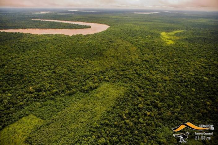 Gobernador de Ucayali anuncia construcción de ferrocarril bioceánico entre Perú y Brasil