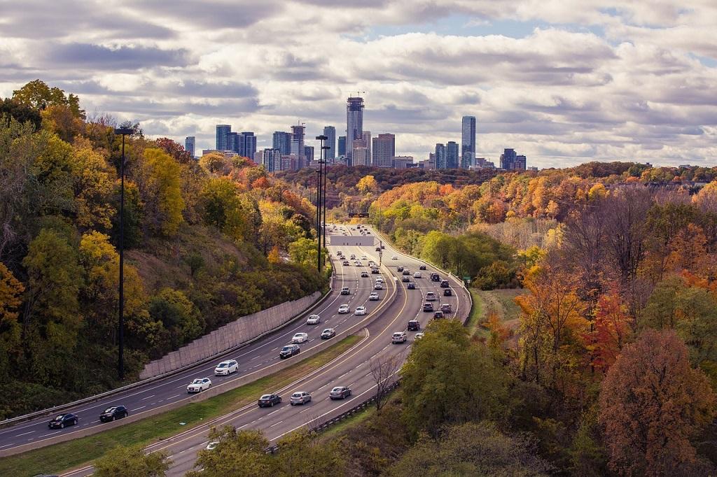 Día de la seguridad vial: señales de tránsito que pueden salvar tu vida