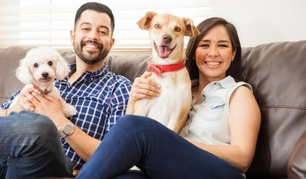 Mejores distritos de Lima para vivir con mascotas