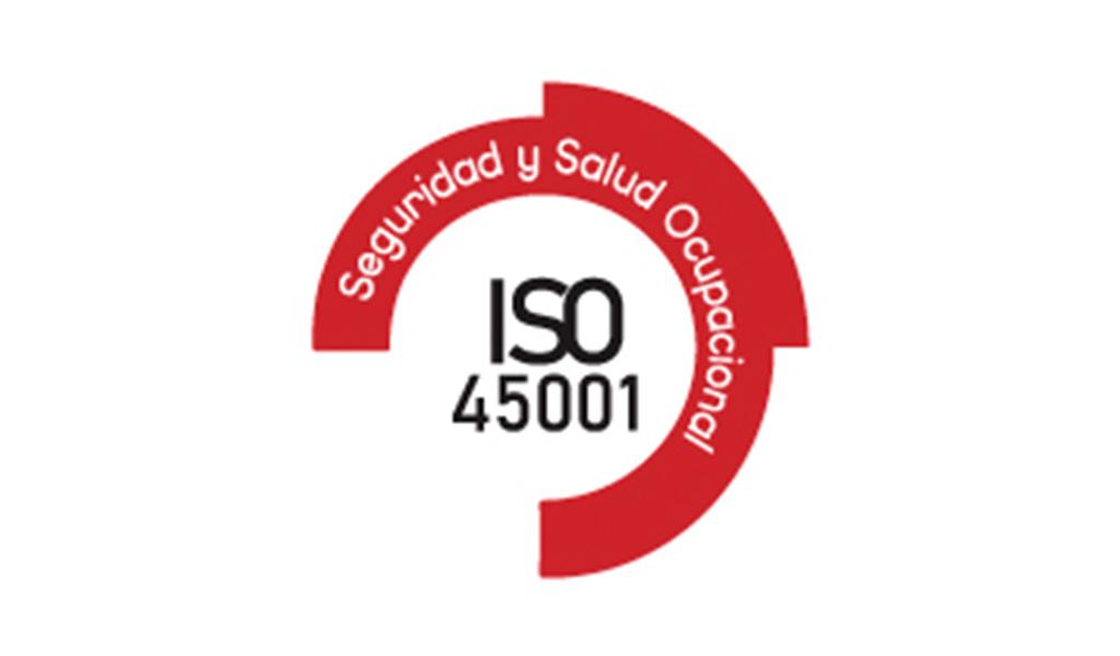 C&S Implementa - Sistema de gestión de la seguridad y salud en el trabajo ISO 45001:201